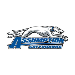 assumption new